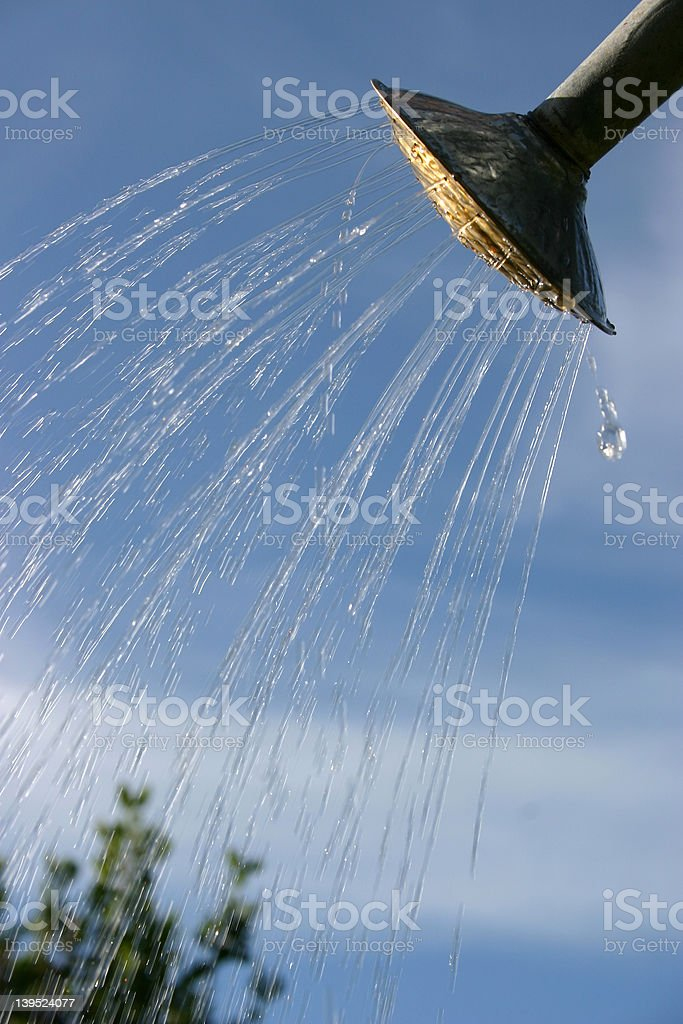 Watering can head royalty-free stock photo