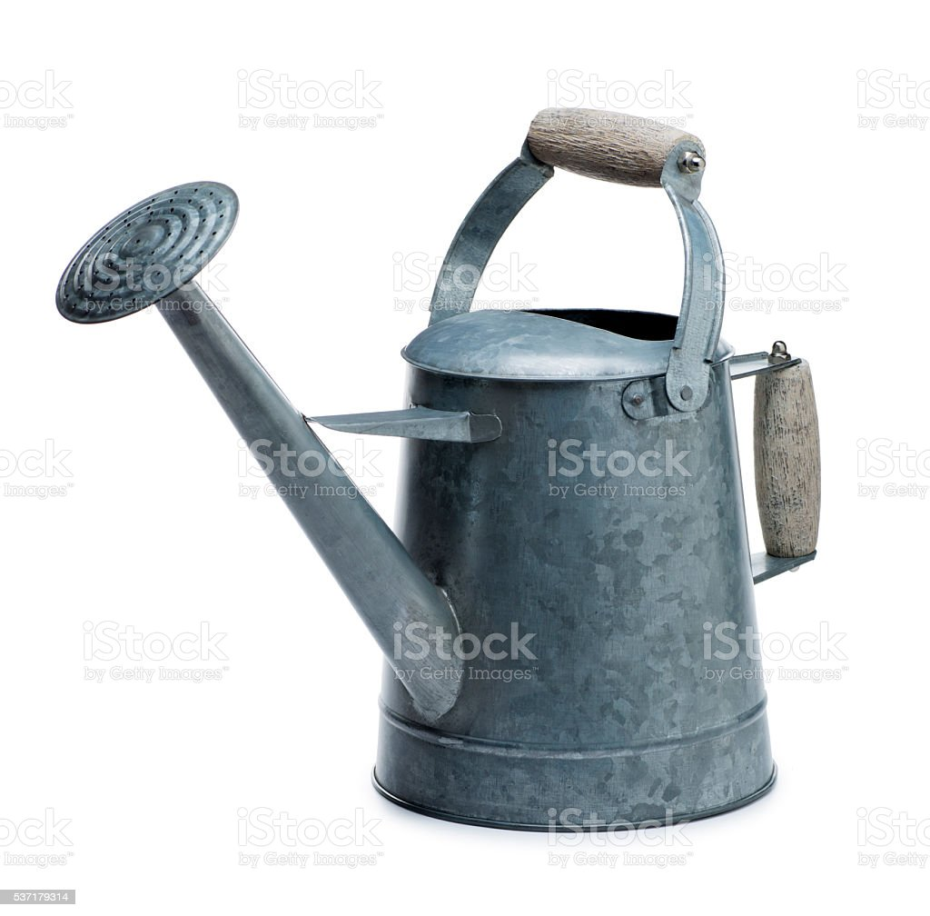Watering Can Isolated on White stock photo