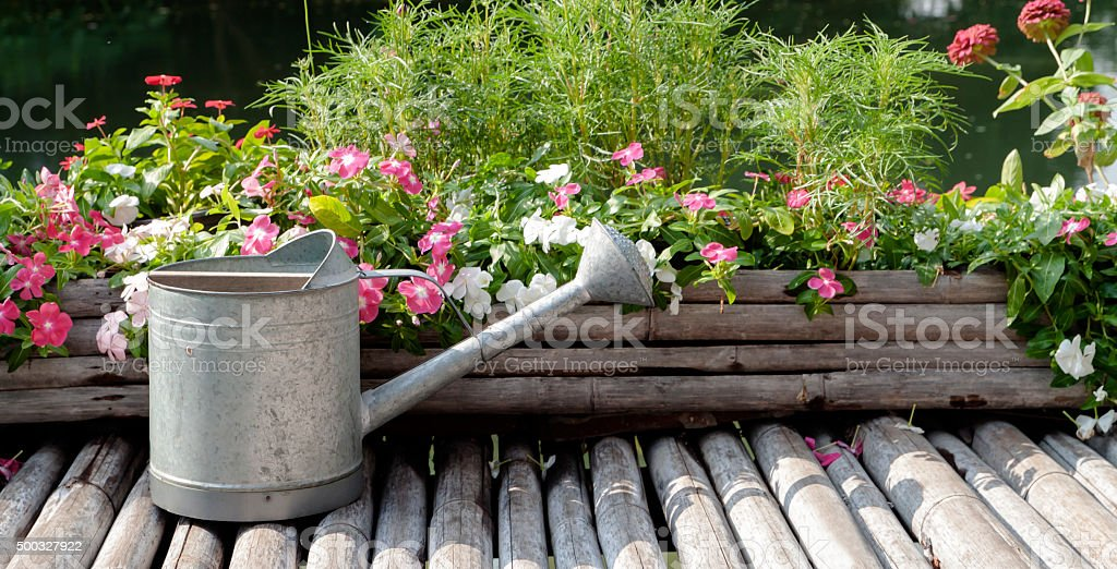 watering can located on bamboo flooring stock photo