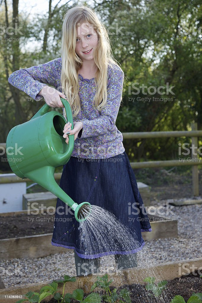 Watering Can... royalty-free stock photo