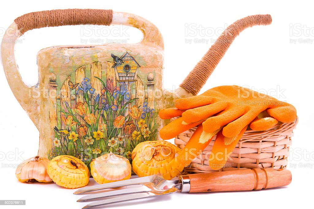 watering can with a rake and tulips flower bulbs royalty-free stock photo