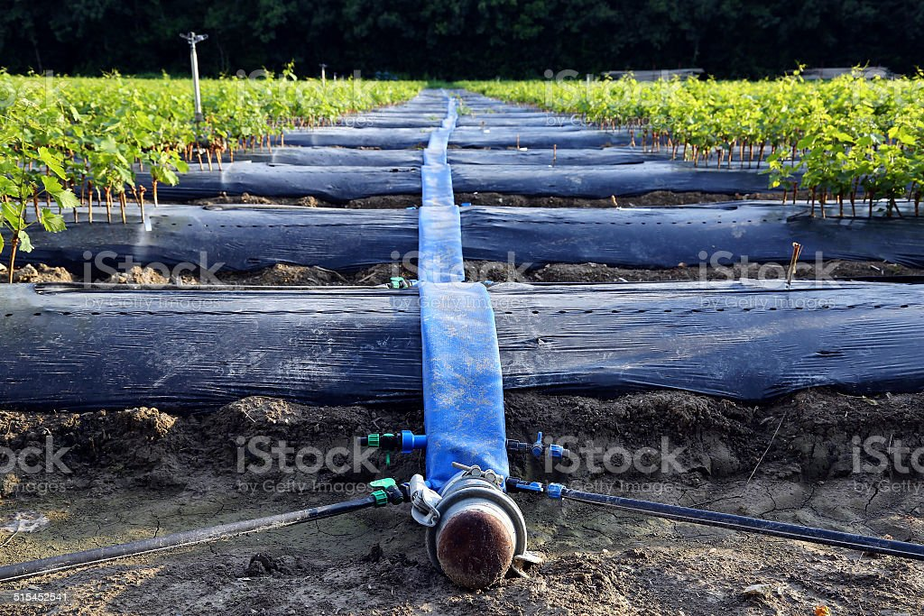 watering equipment fields royalty-free stock photo