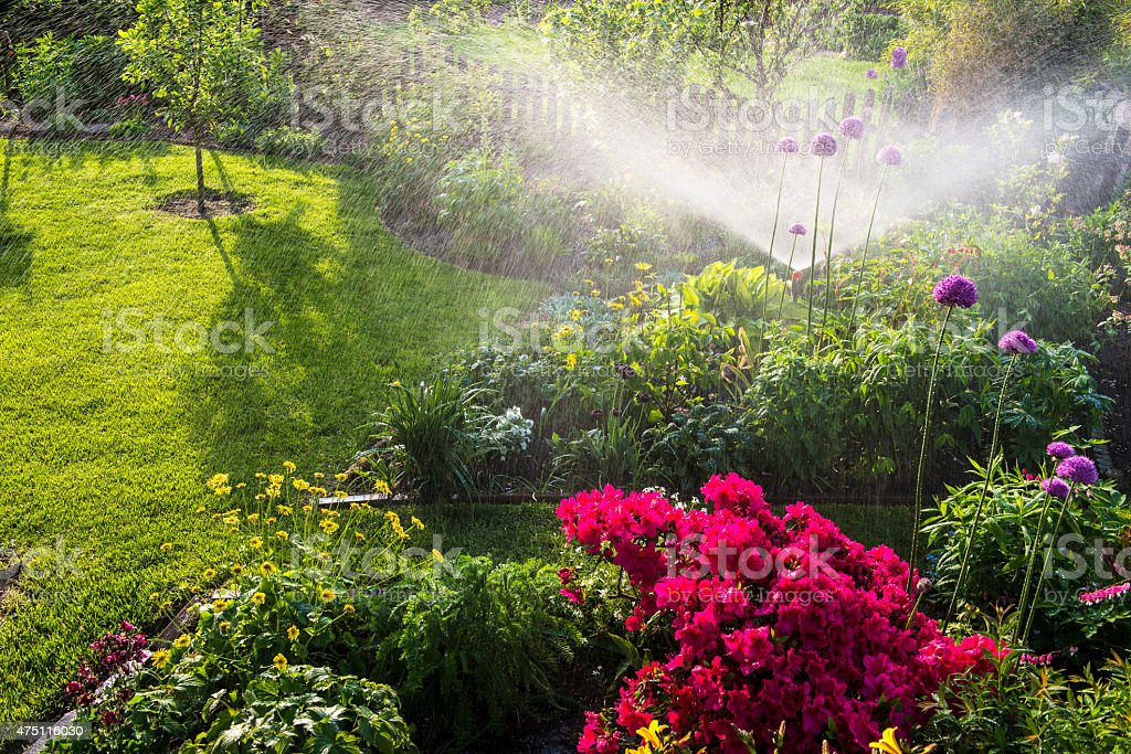 Watering flowerbeds stock photo