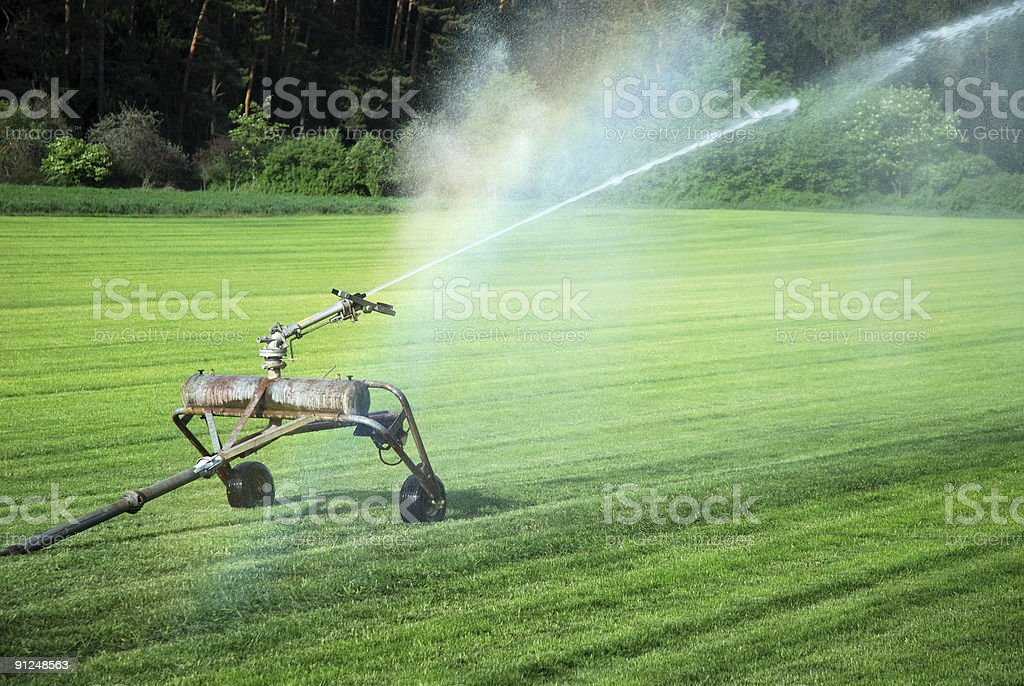 Watering grass royalty-free stock photo