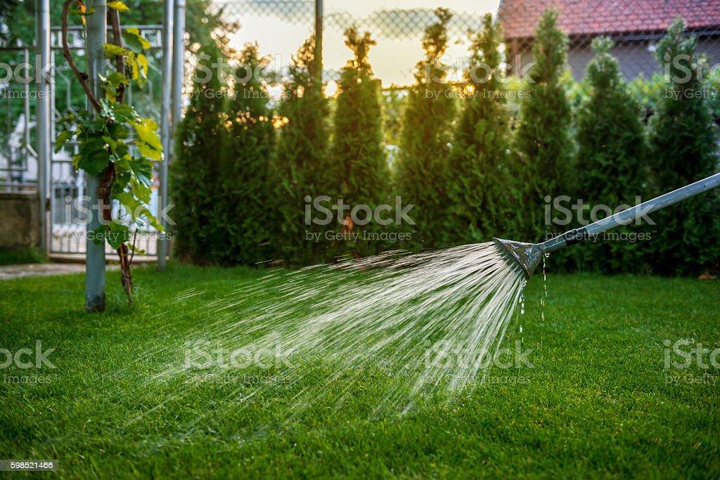 Watering lawn in garden stock photo