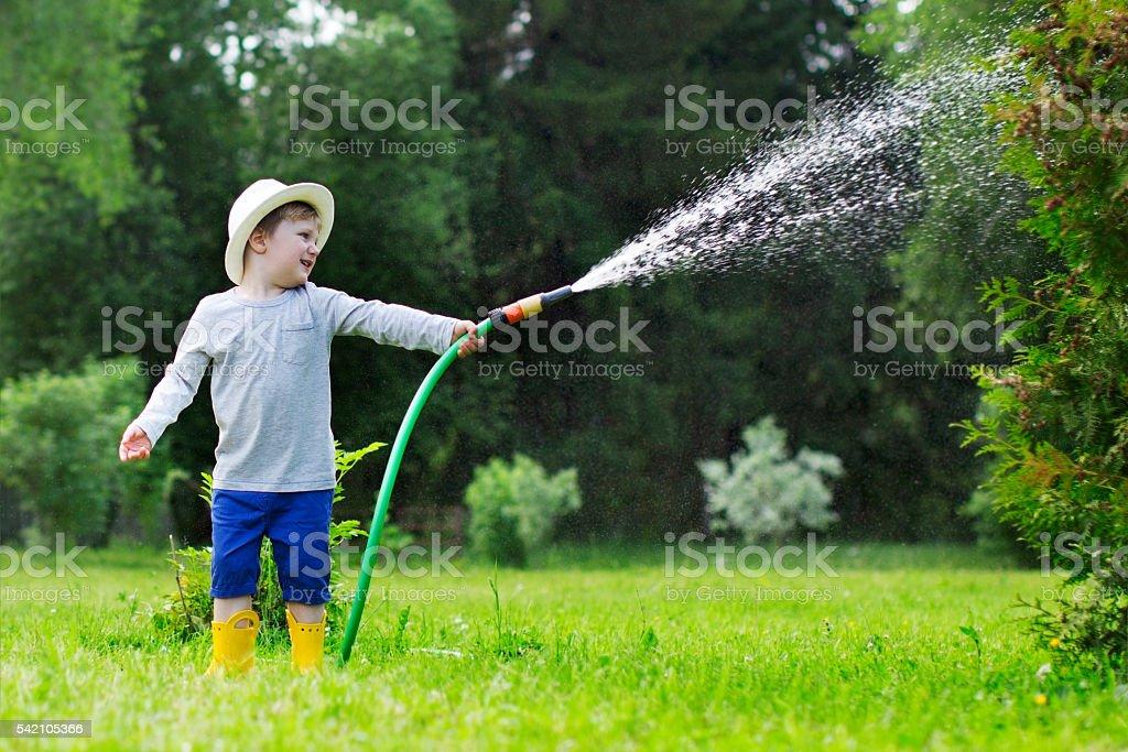 Watering stock photo