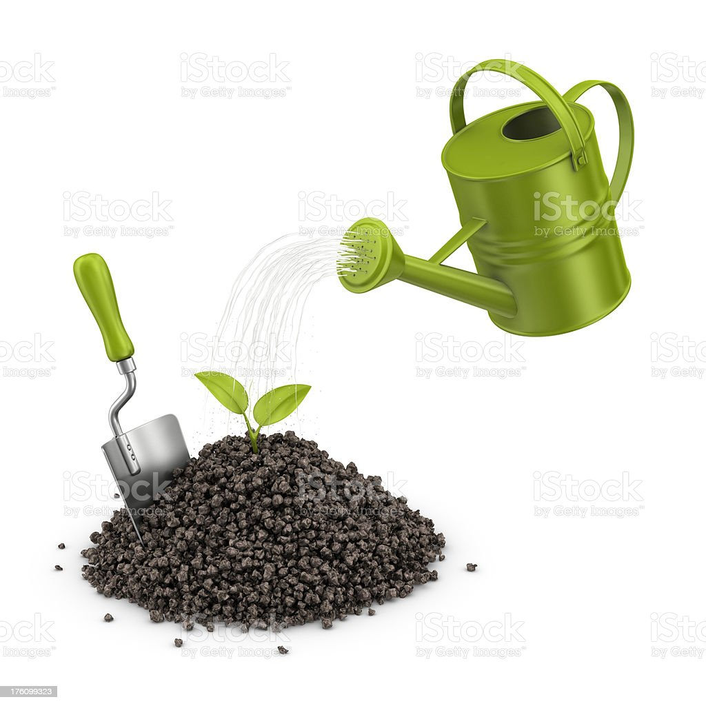 watering plant royalty-free stock photo