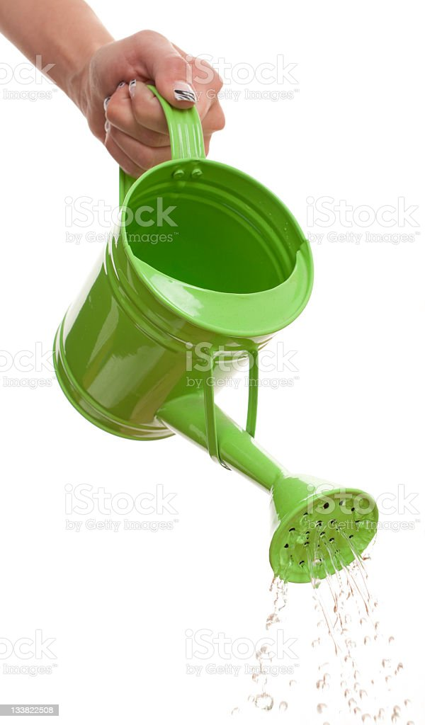 Watering Plante royalty-free stock photo