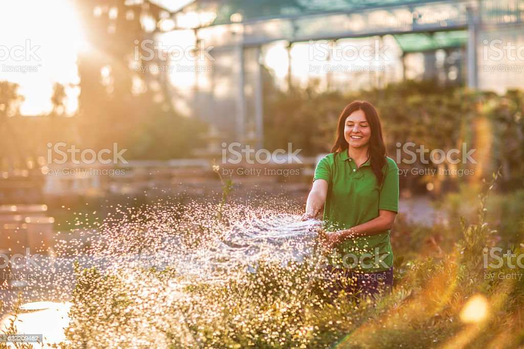 Watering plants at the end of the day stock photo