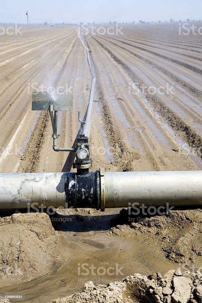 Watering the farm stock photo