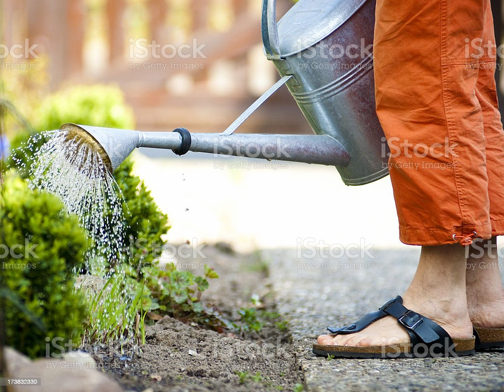 Watering the Garden royalty-free stock photo