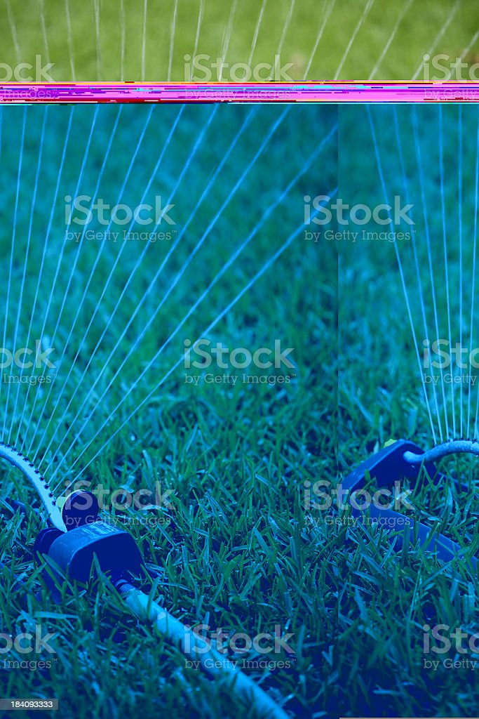 Watering the Lawn royalty-free stock photo