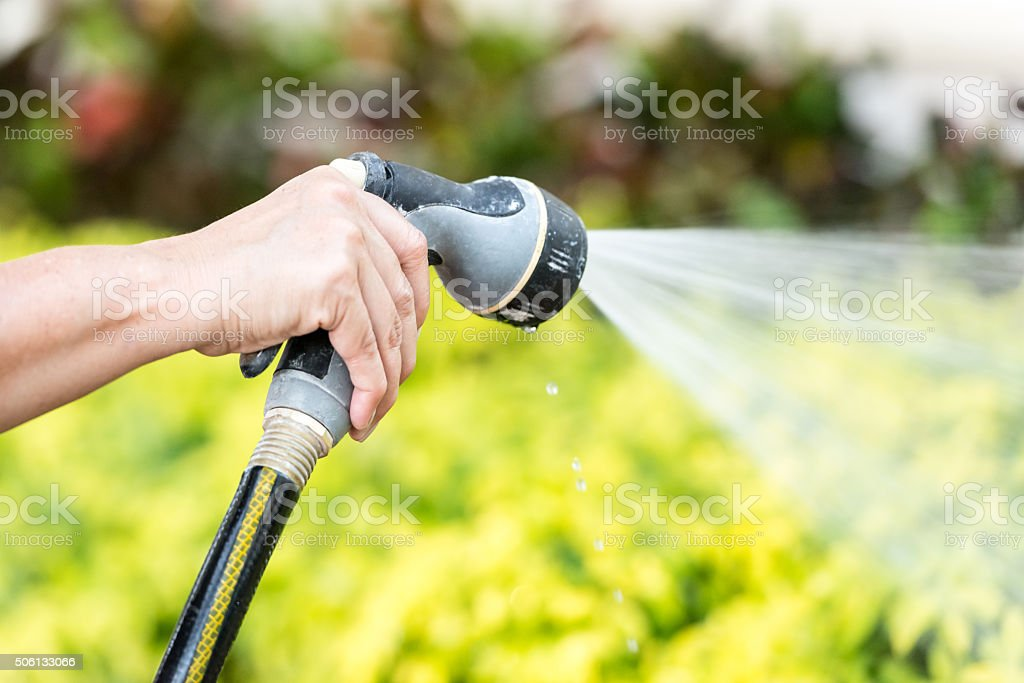 watering the lawn stock photo