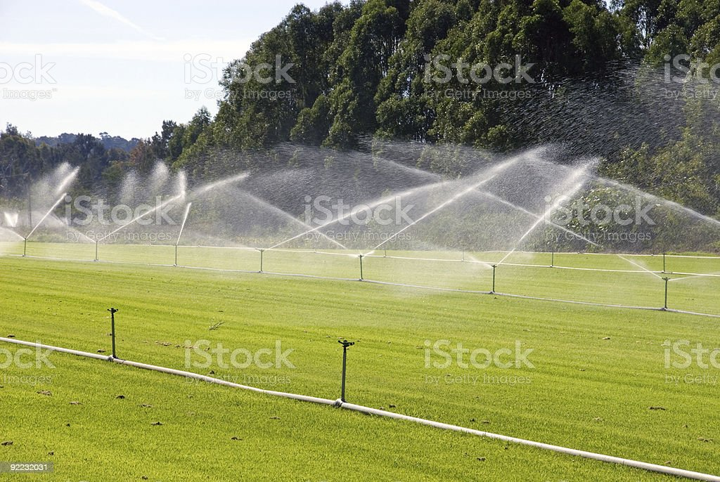 Watering Turf royalty-free stock photo