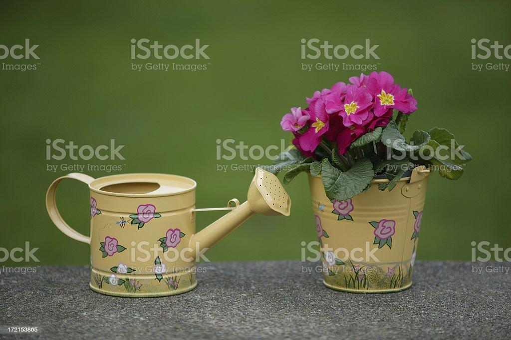 Wateringcan 0003 royalty-free stock photo