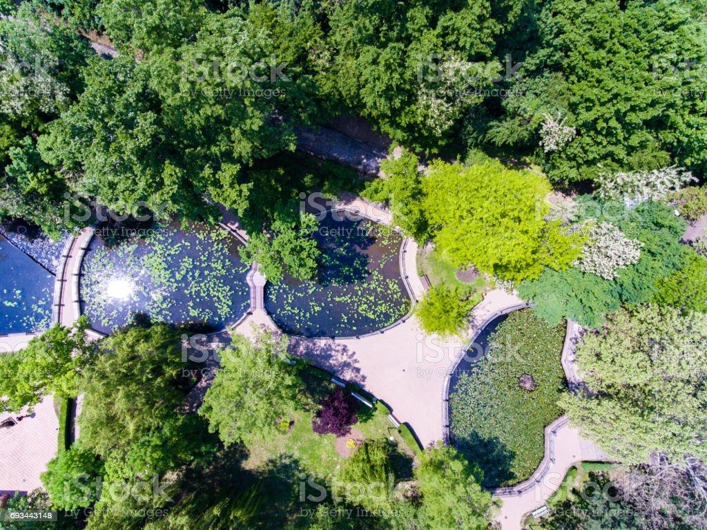Waterlilies Lake, Felix Baths - Baile Felix, Bihor, Romania stock photo