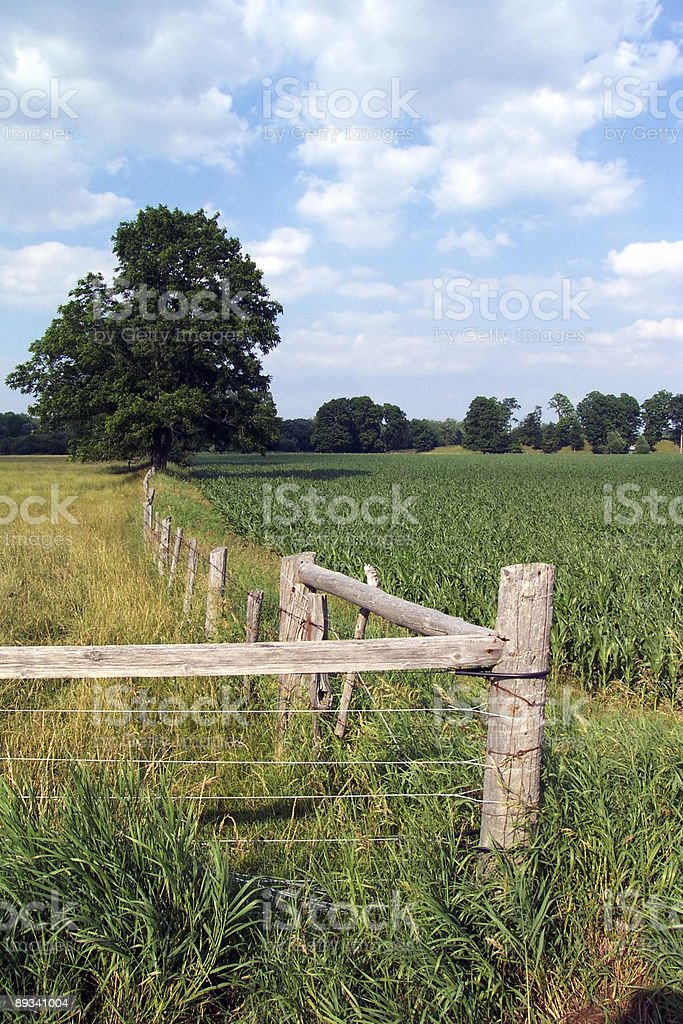 Waterloo Ontario Countryside stock photo