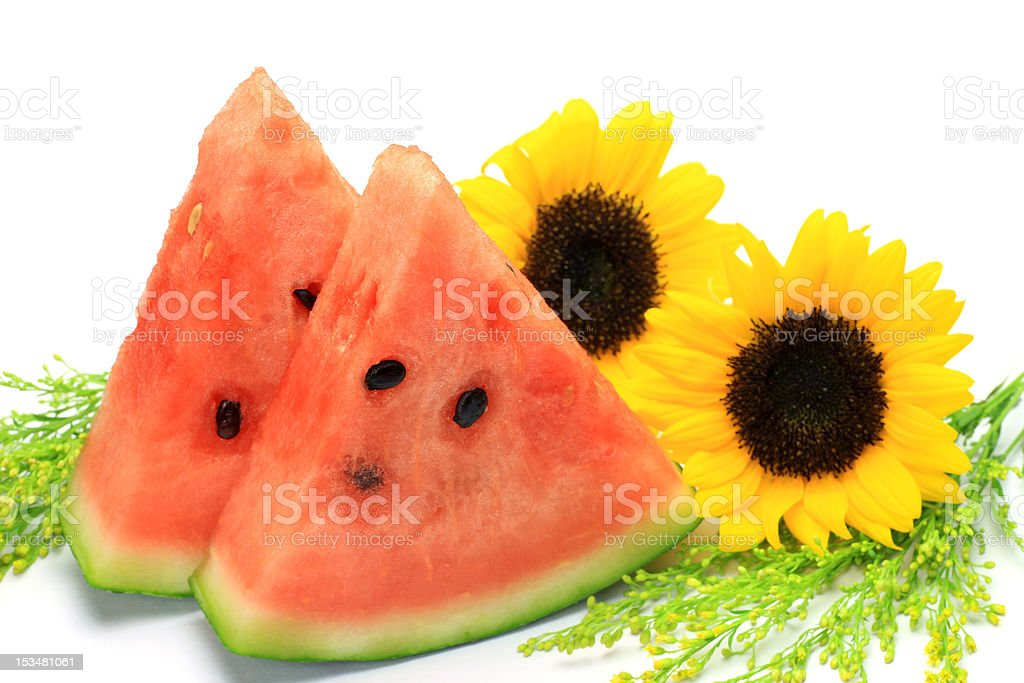 watermelon and sunflower royalty-free stock photo