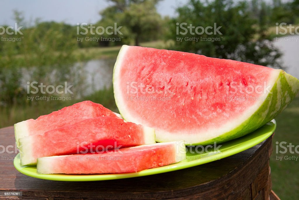 Watermelon Slices royalty-free stock photo