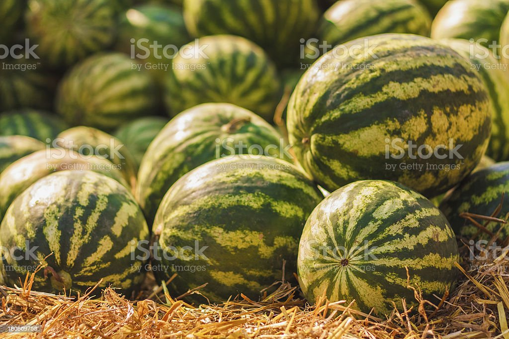 Watermelons were piled up royalty-free stock photo