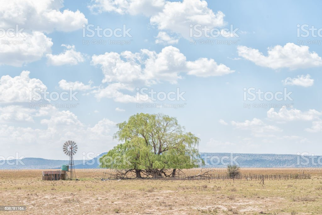 Water-pumping windmill, dam, kraal and willow tree stock photo