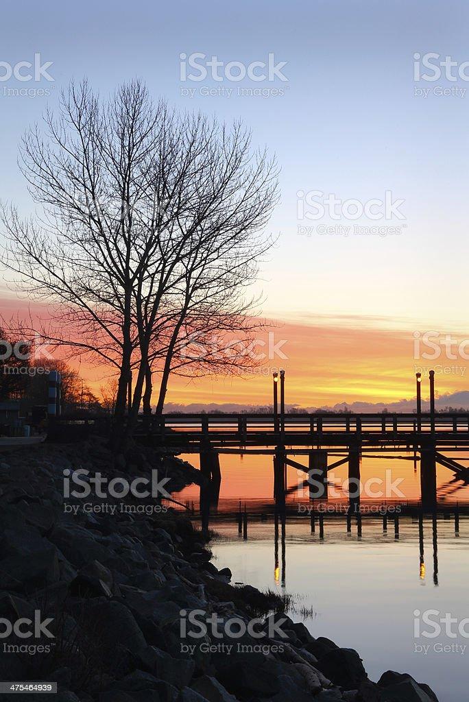 Water's Edge, Fraser River Morning stock photo
