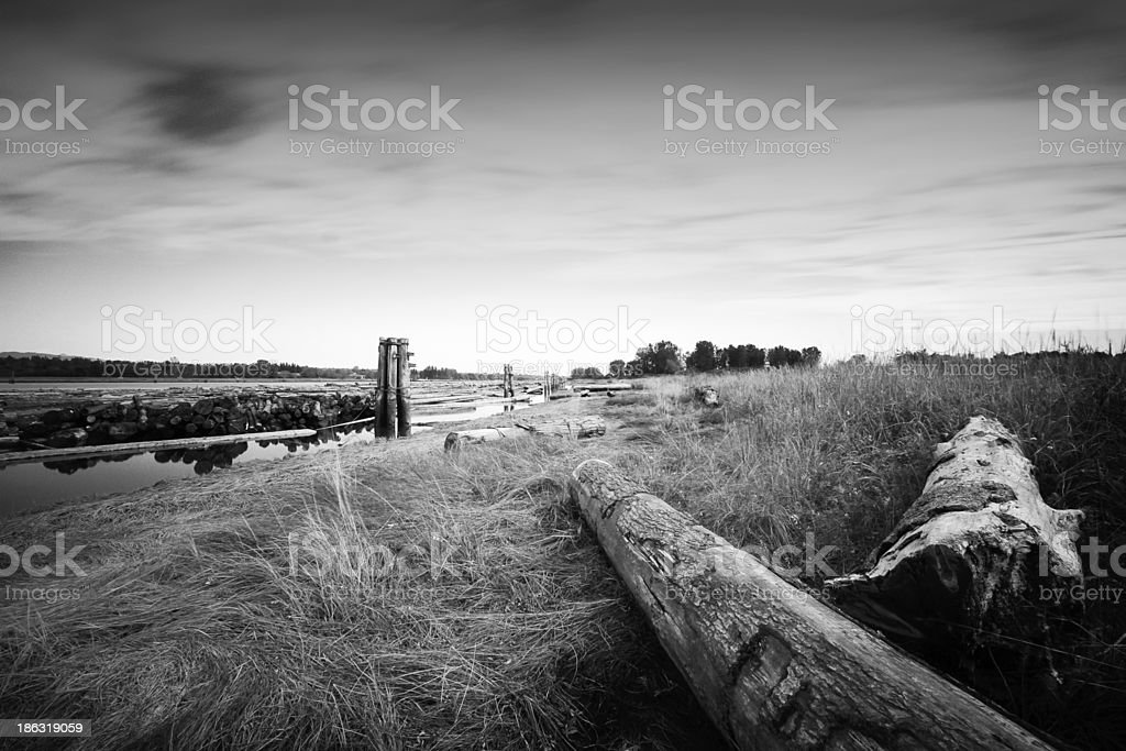 Waters Edge stock photo