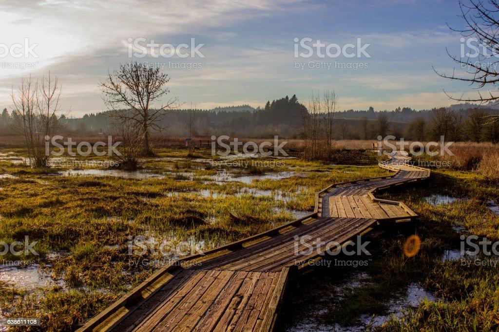 Watershed Boardwalk stock photo