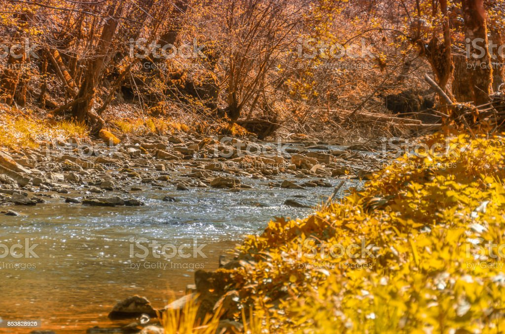waterside indian summer scenery stock photo