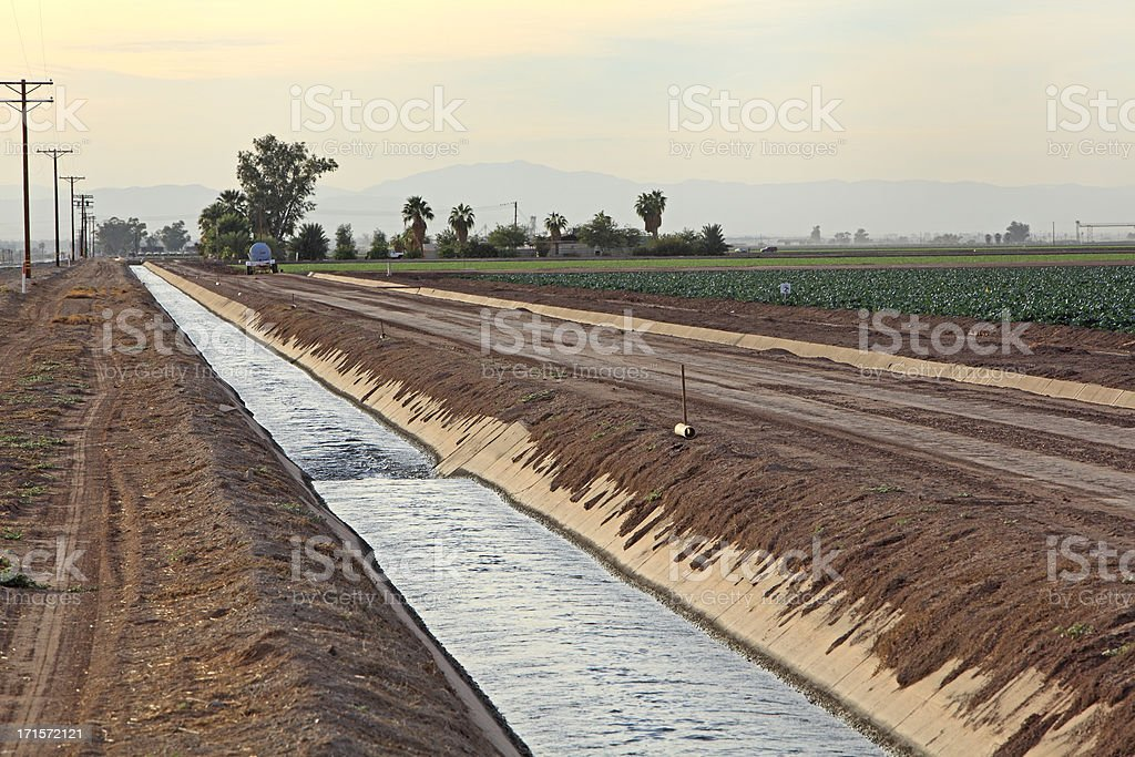 Water,Vital Importance For Crops In California. stock photo