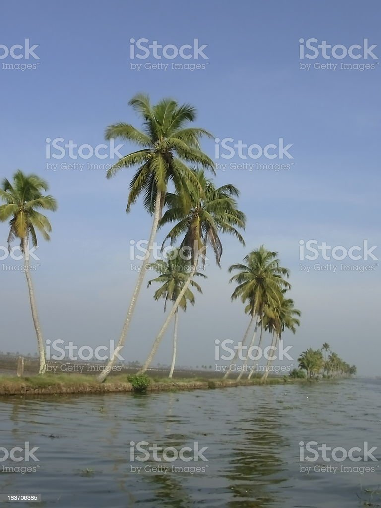 waterway channel in Kerala South India stock photo