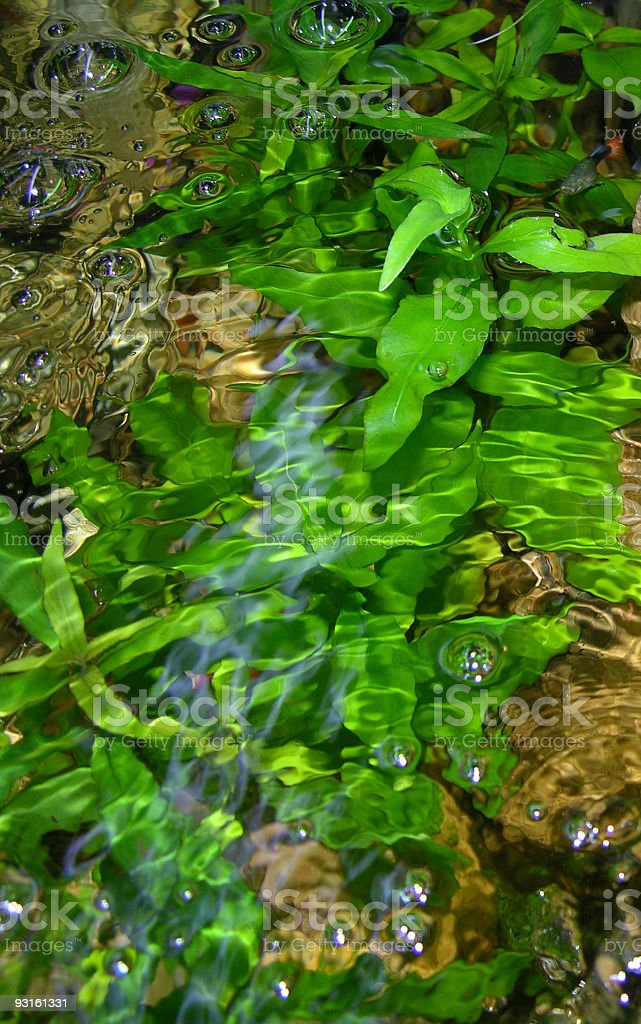 Watery waste stock photo