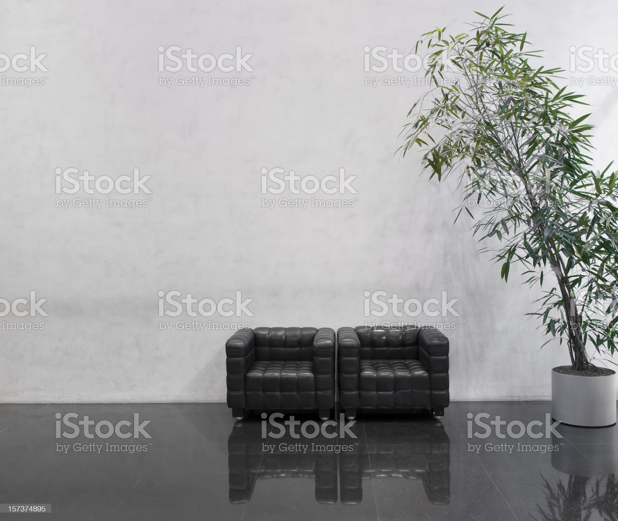 Wating area with two black chairs and a plant royalty-free stock photo