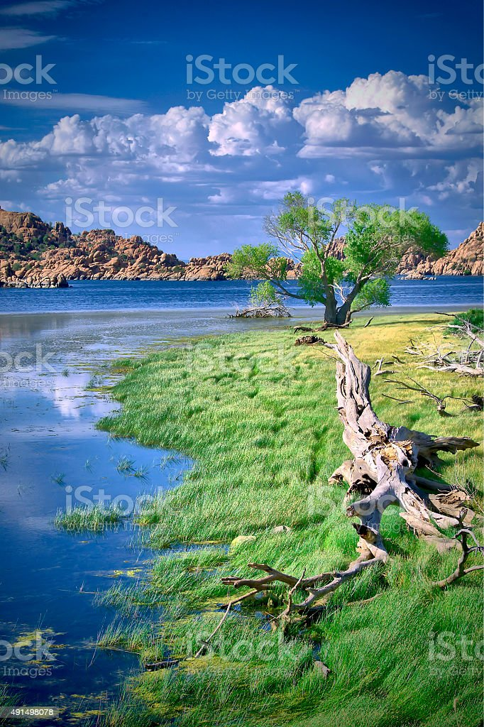 Watson Lake Shore stock photo