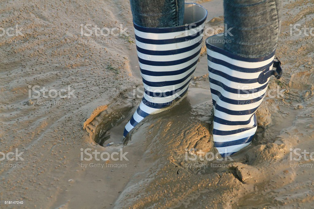 Wattenmeer stock photo