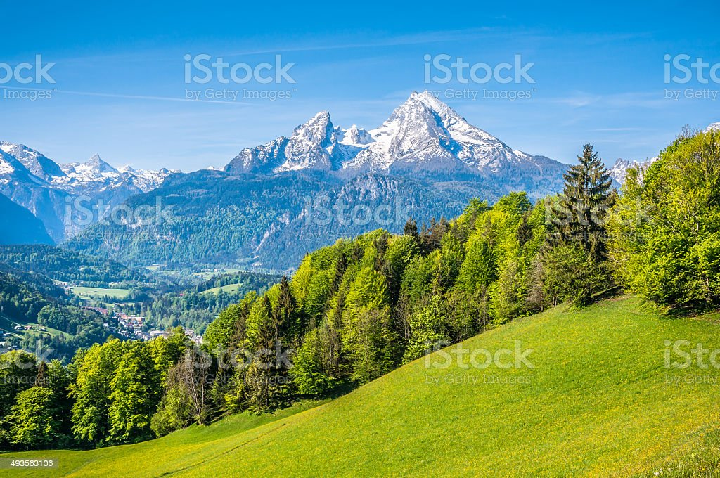 Watzmann mountain with green meadows and trees, Bavaria, Germany stock photo