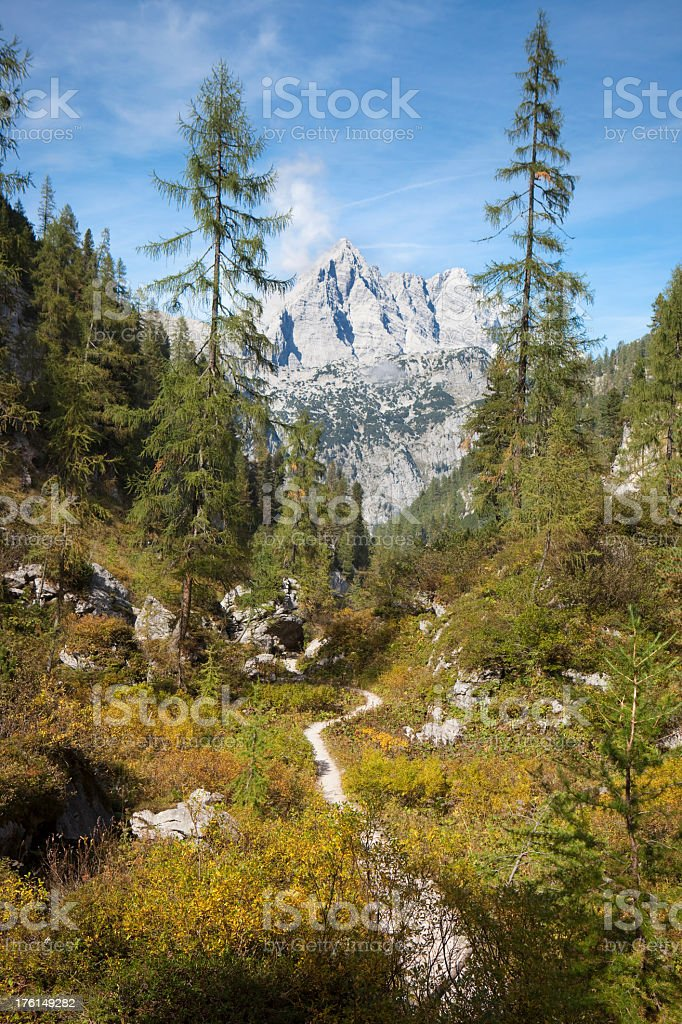 Watzmann Mountains from the South XXXL stock photo