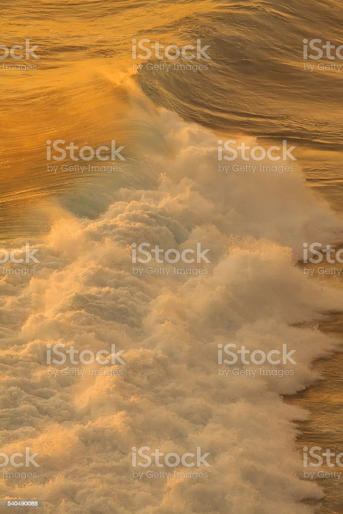 wave at sunset stock photo