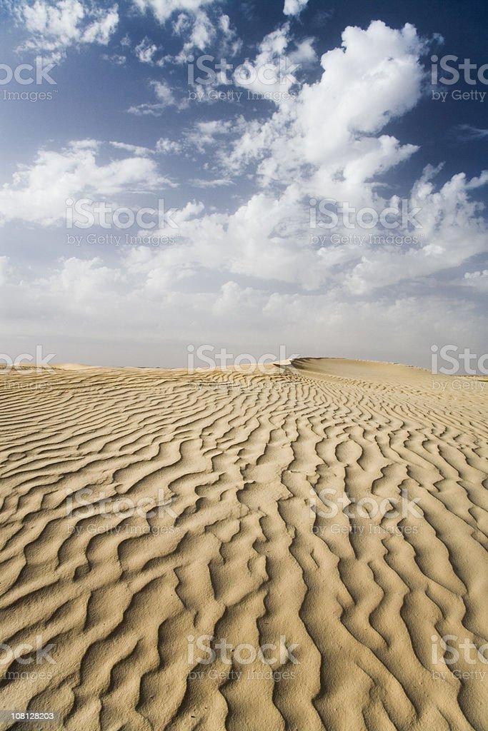 Wave Lines in Sahara Desert royalty-free stock photo