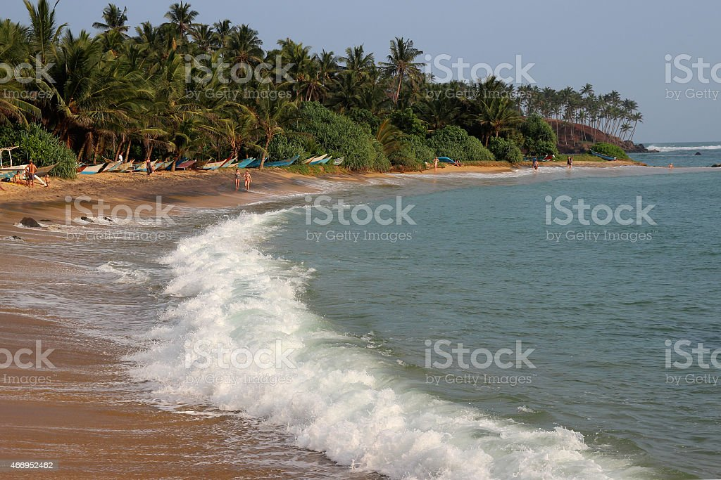 waves breaking on a sandy seashore with palms royalty-free stock photo