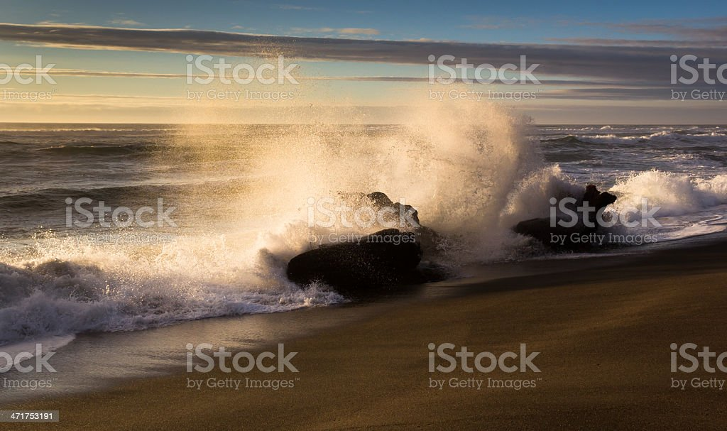 Waves bringing in driftwood royalty-free stock photo