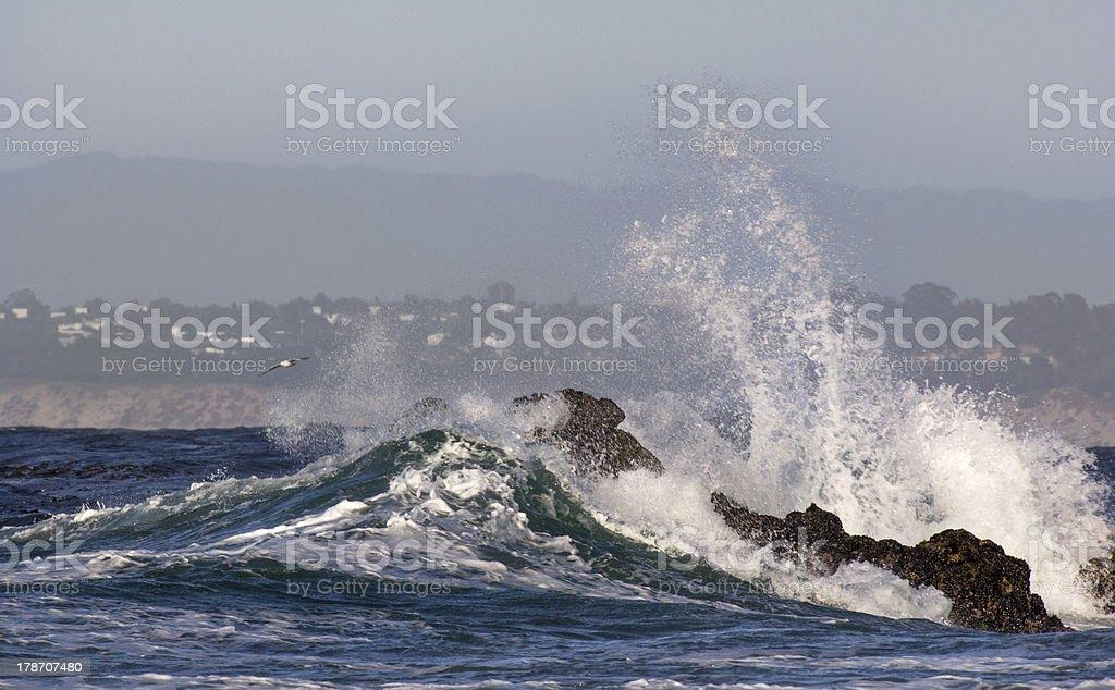 Waves Crash Ashore at Pacific Grove, California. stock photo