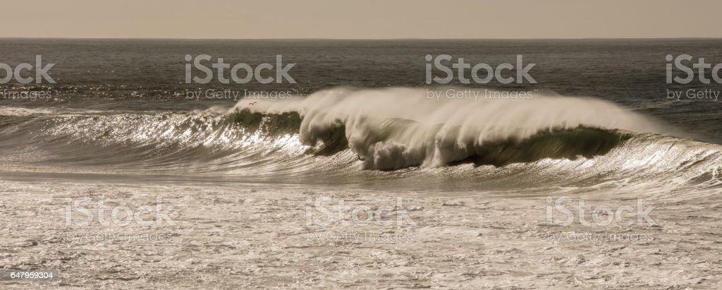 Waves in Pacific Ocean stock photo
