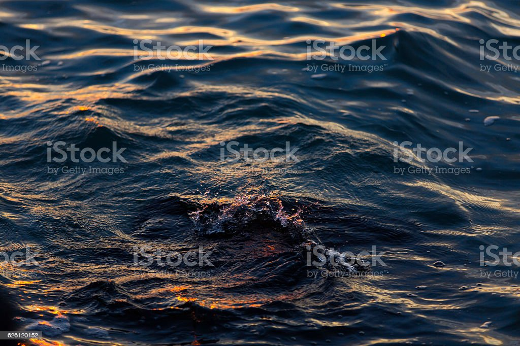 Waves in the sunset stock photo