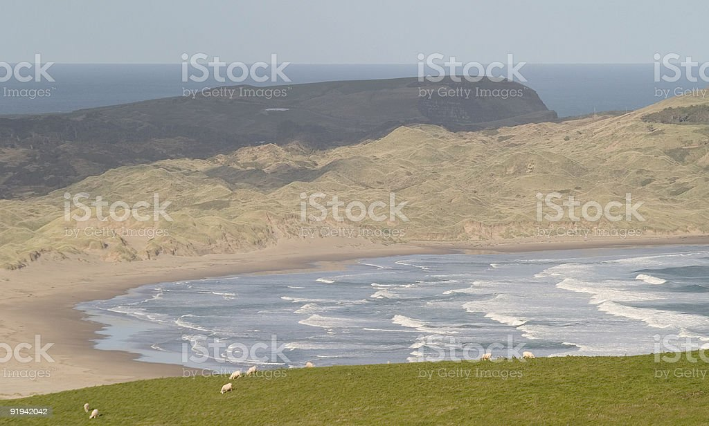 waves on a desserted costline royalty-free stock photo