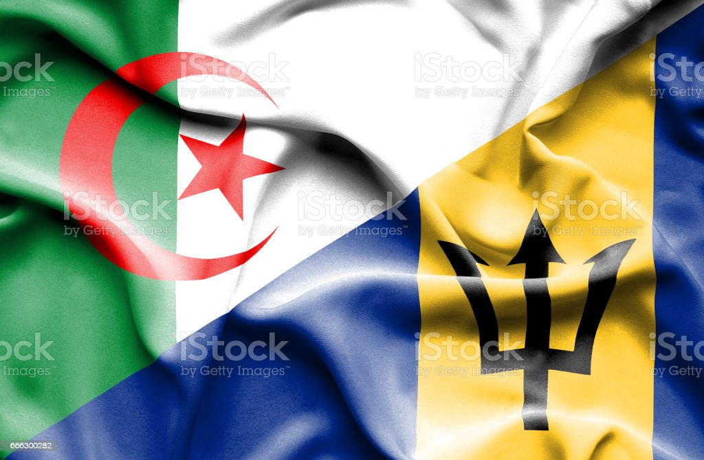 Waving flag of Barbados and Algeria stock photo