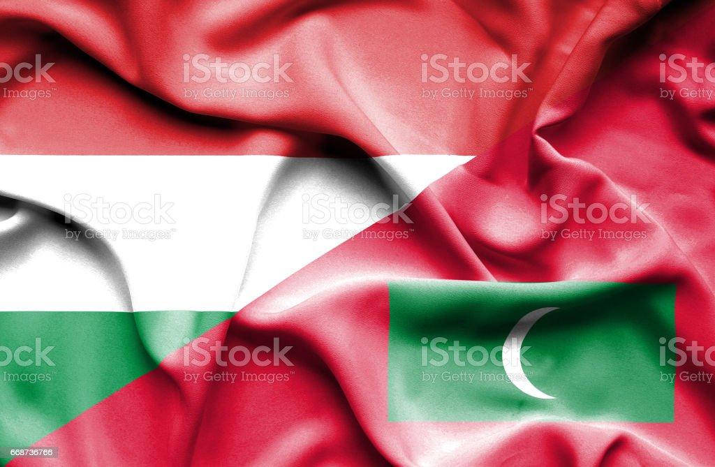 Waving flag of Maldives and Hungary stock photo