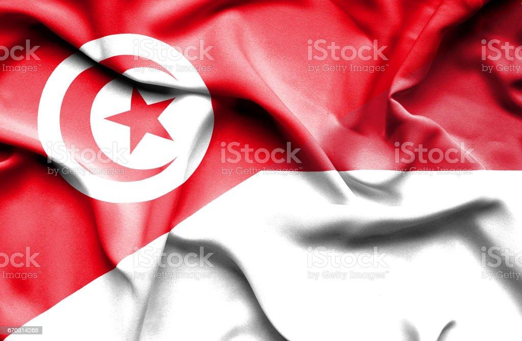 Waving flag of Monaco and Tunisia stock photo