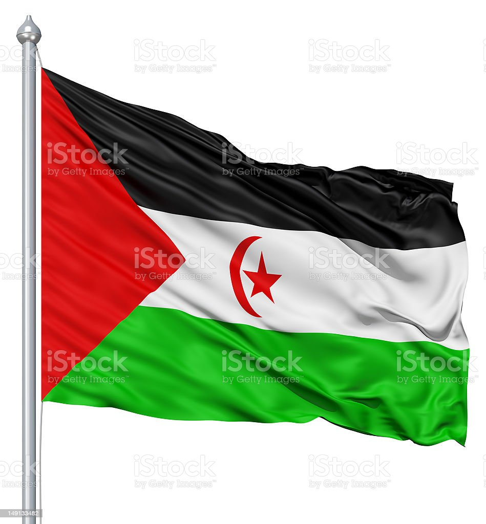 Waving flag of Sahrawi Arab Democratic Republic stock photo