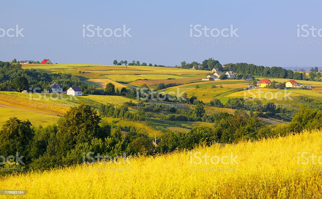 Wavy fields and village stock photo